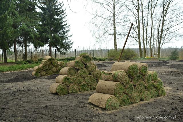 trawniki z rolki usluga zakładanie