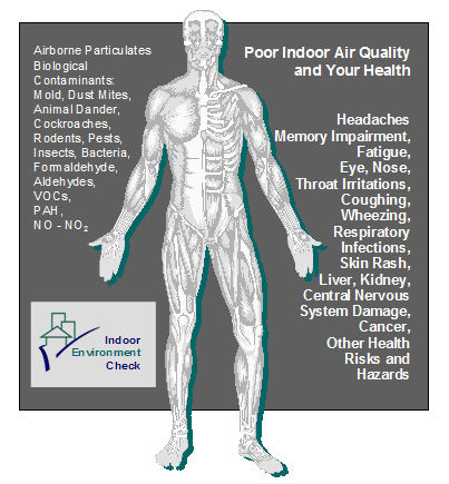 air pollution and its devastating effects The effects of air pollution environmental pollution is the key concern for the humanity it does not have any borders - each member of our planet is affected by its devastating effects.
