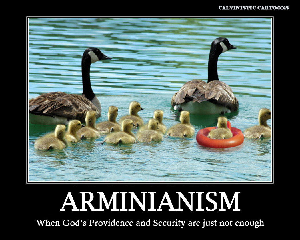 arminianism vs calvinism A historical look at the debate between calvinism and arminianism along with a plea for respect.