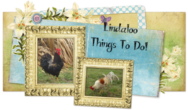 Lindaloo Things To Do!
