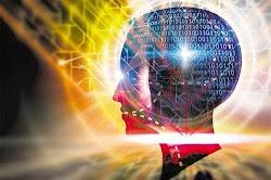 Internet cambia la forma en que funciona el cerebro humano. Foto: Simon Chavez.