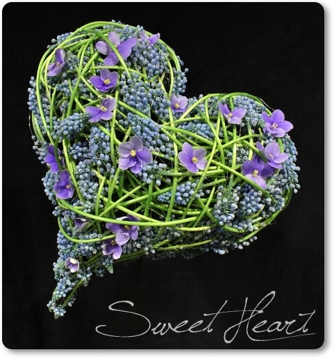 blomsterhjärta, hjärta med blommor, pärlhyacinther