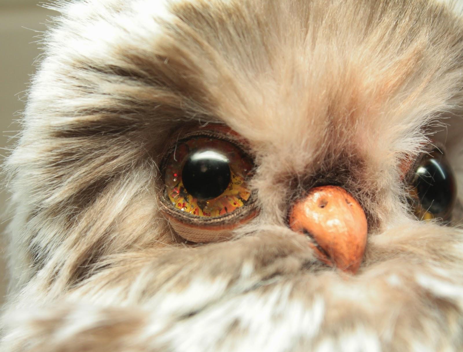 Совенок, курсы по мишкам Тедди, Новосибирск, мастер-классы, мишки Тедди, авторские игрушки, сова
