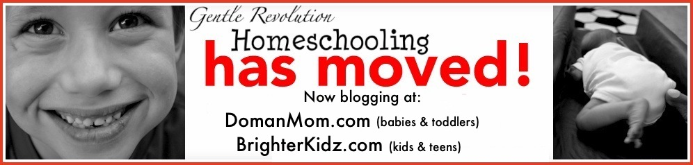 Gentle Revolution Homeschooling