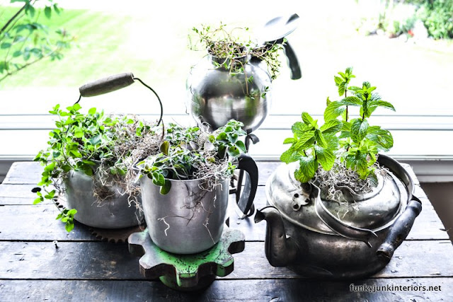 indoor herb garden planted in old kettles via Funky Junk Interiors