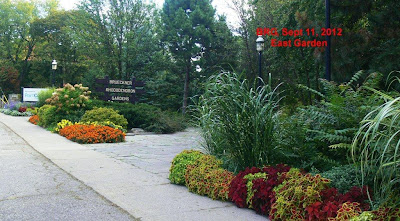 Marigolds, mums, coleus and other annuals at Port Credit garden.