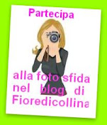 Foto sfida