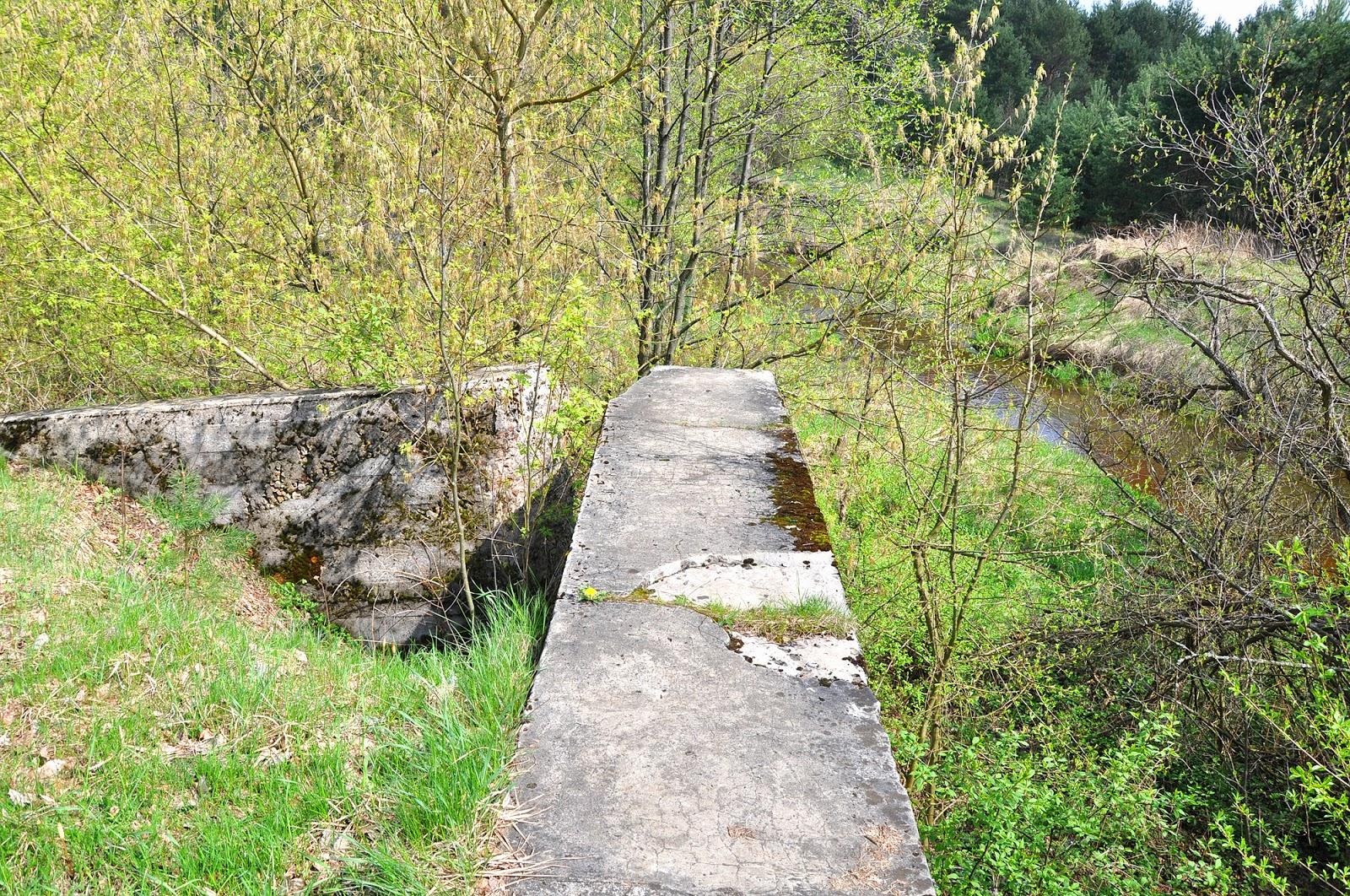 Okolice Małachowa. Fragment dawnego spiętrzenia na rzece Czarnej Koneckiej. Foto.KW.