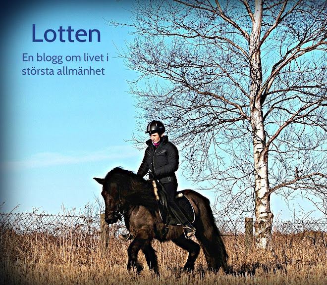 Lottens Blogg