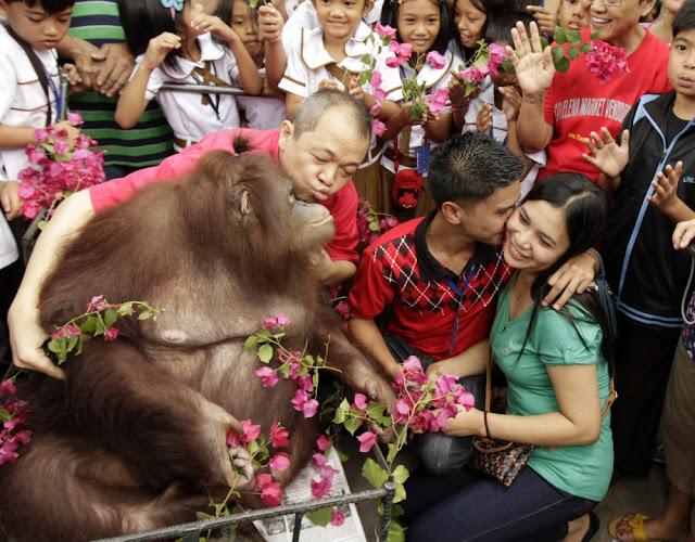 Happy Valentines Day 2016 in Philippines