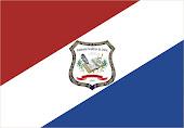 Bandeira da AELE