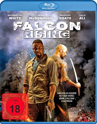 Falcon Rising 2014 Hindi BRRip