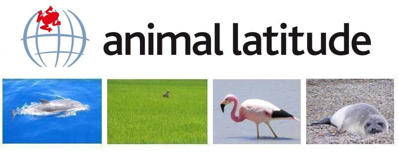 animal latitude