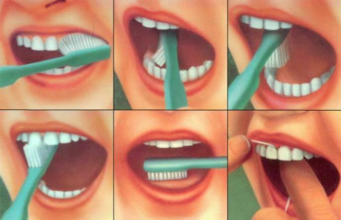 Cara Menyikat Gigi Dengan Benar