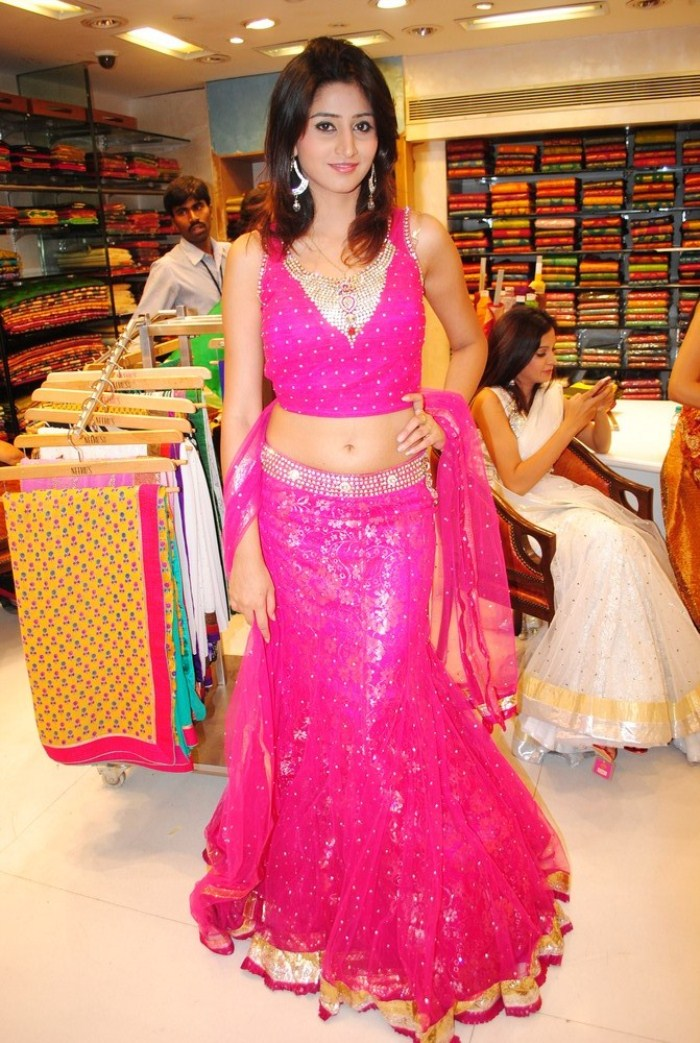 Hyderabad New Sexy Model Shamili Cute Navel Show wallpapers