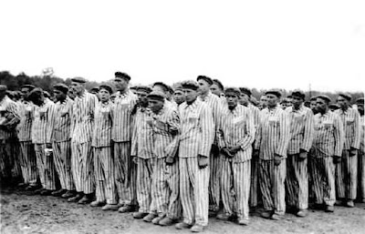 pink triangles 175 holocaust victims homosexuals
