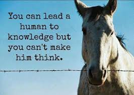 "Image:  A horse stares brazenly over a barbed wire fence declaring:  ""You can lead a human to knowledge; but you can't make him think.""  In My NTCC My NTCC:  ""Be ye not as the horse or mule, which have no understanding: whose mouth must be held in with bit and bridle, lest they come near unto thee."" - (Psa 32:9) - At least think about it."