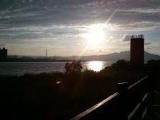 社子島遠眺觀音山