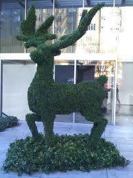 Edward Scissorhands Topiary
