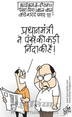 manmohan singh cartoon, sharad Pawar cartoon, indian political cartoon