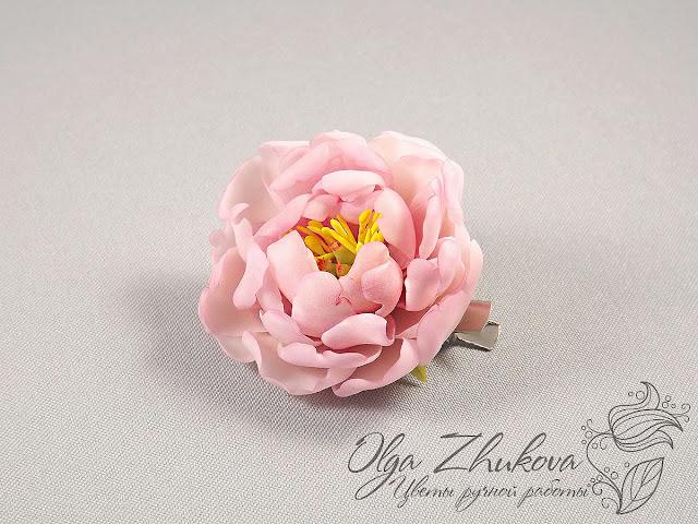 Цветы многолетники фото которые все лето цветут