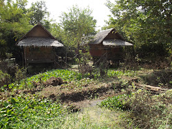 Typical Thai rural homes.