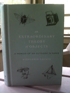 Book Review and Giveaway: An Extraordinary Theory of Objects Blog Tour