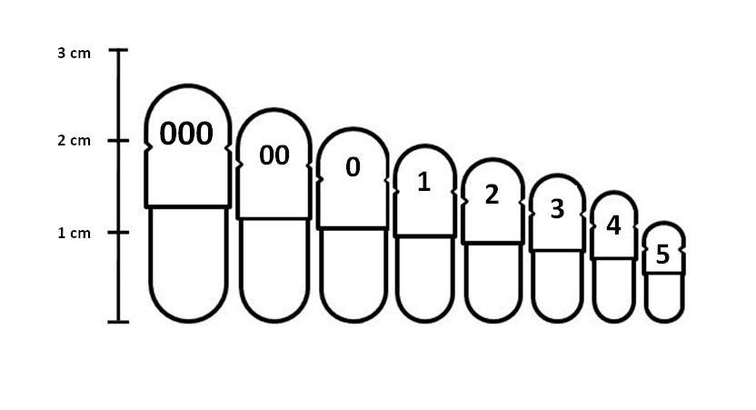 chart, showing all the available sizes 000, 000, 0, 1, 2, 3, 4& 5