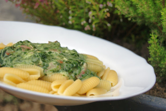 szybki obiad, szpinak przepisy, makaron ze szpinakiem, włoskie przepisy, pyszny obiad, szybki obiad, ekspresowy obiad, świetne przepisy, najlepszy makaron ze szpinakiem, szpinak jest dobry, polub spzinak, znienawidzony szpinak
