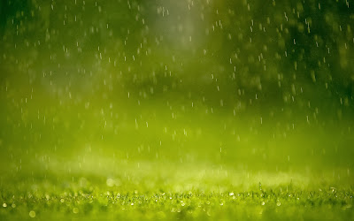 Green rain free download desktop wallpaper