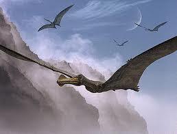 Ornithicheirus