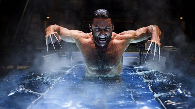 Scientists Found the Wolverine Healing Gene