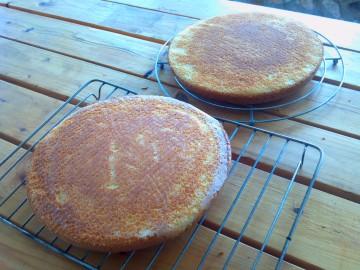 Sugar Shack Cake Decorating