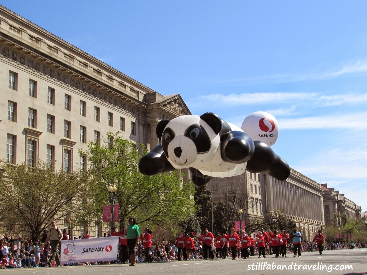 Cherry Blossom parade floating panda bear balloon