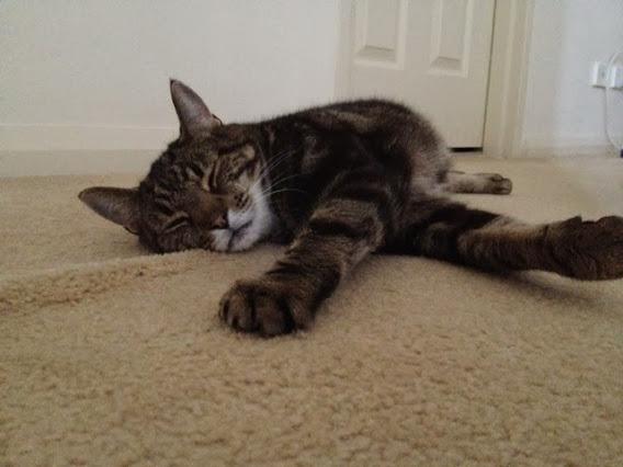 Arthur sprawled