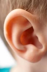 kesehatan telinga
