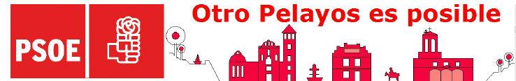 PSOE de Pelayos de la Presa