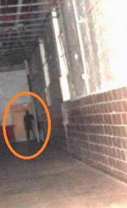 Shadow Man of West Virginia State Penn