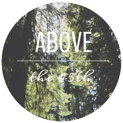 ▲ ABOVE the 45th ▲