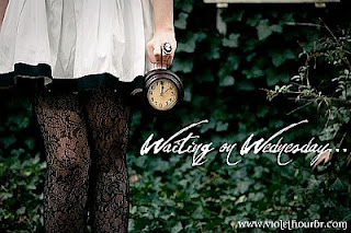 Waiting on Wednesday!