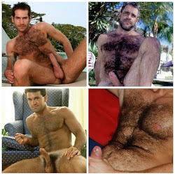 Machos de Peito Peludo