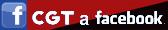 CGT València a Facebook