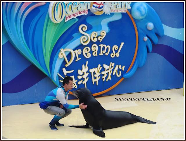 gambar ocean park hong kong tiket disneyland tips mudah cable car dolphin