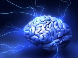 http://www.ciencia-online.net/2013/01/inteligencia-emocional-associada-ao-qi.html