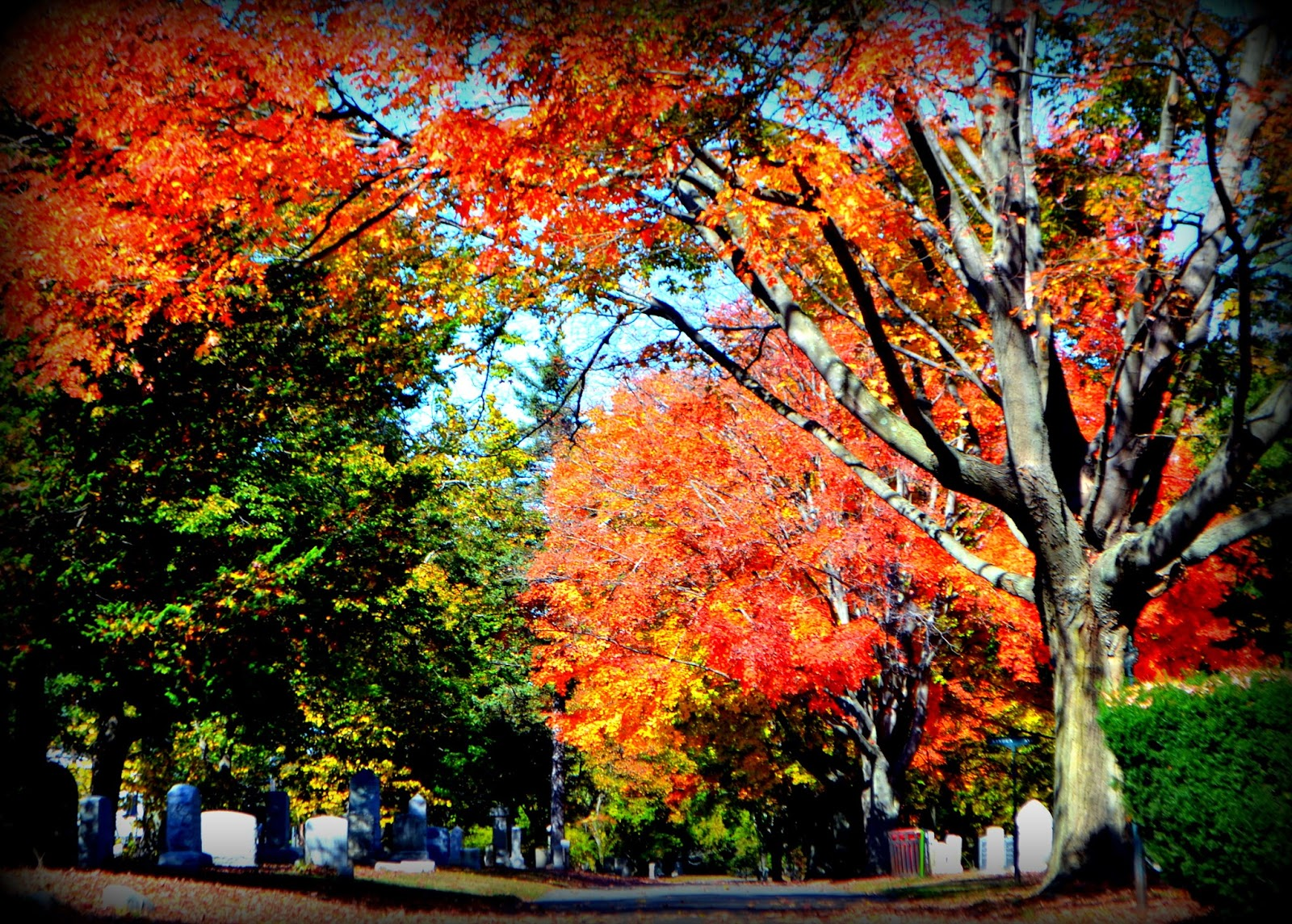 cemetery, fall foliage, autumn, leaves, color