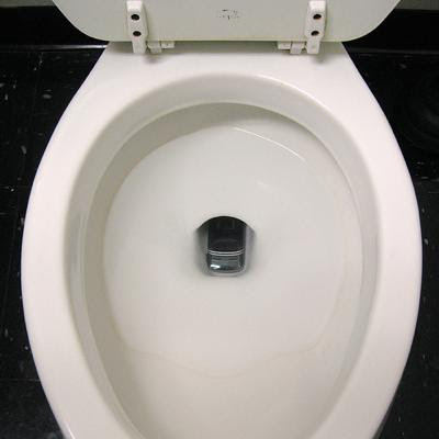 the white porcelain toilet