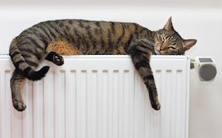 Montaje y mantenimiento de calefacción