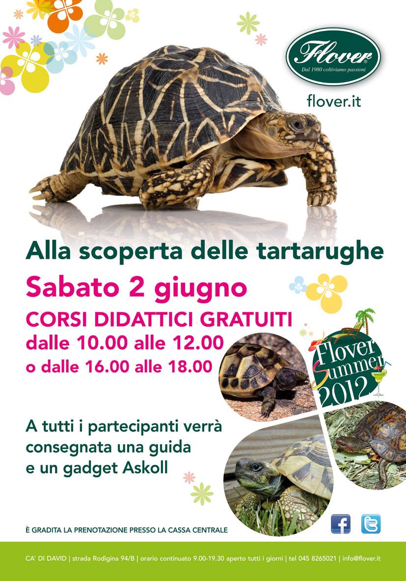 Corriere del web flover garden center c di david alla for Letargo tartarughe acquatiche