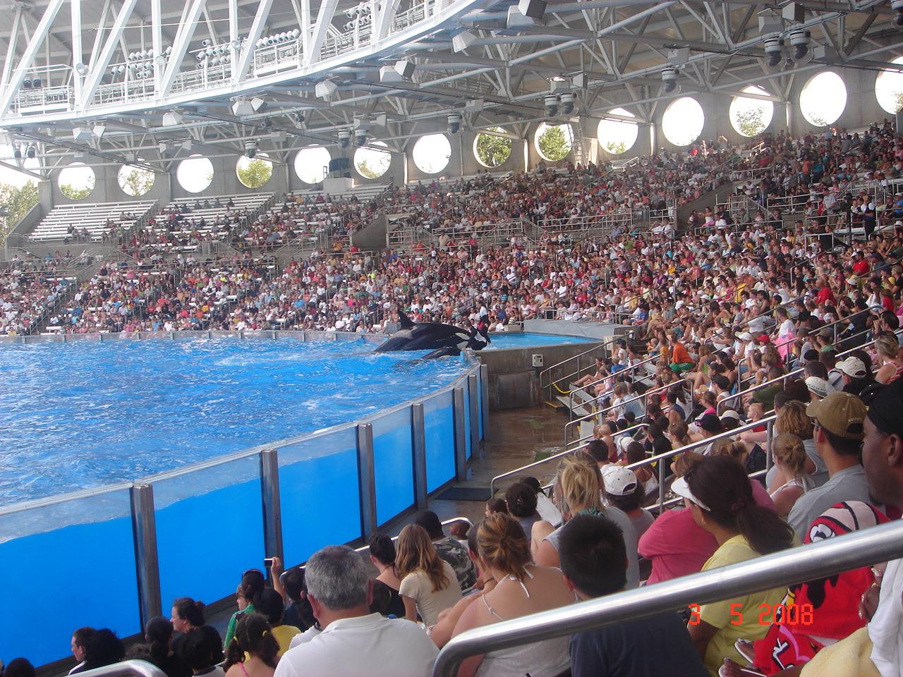Shamu Stadium at Sea World in Orlando