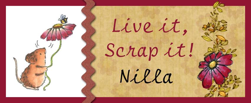 Live it - Scrap it!